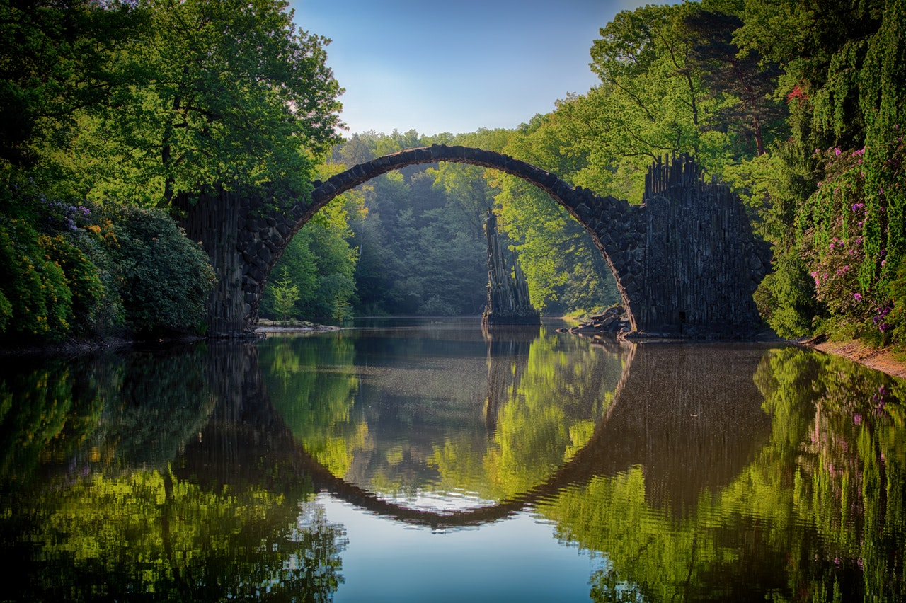 Rüya Yorumu: Bir ormanın rüyası nedir